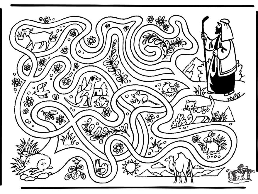 labirint oita pierduta